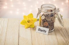 Charity money jar savings motivational concept on wooden board. Money jar savings motivational concept on wooden board with yellow daffodil flower with soft stock photos