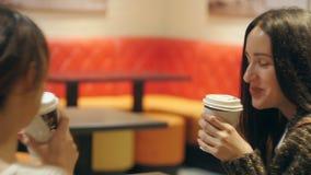 Charla de las muchachas sobre una taza de café almacen de video