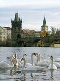 Charles-Brücke, Prag, Tschechische Republik Stockfoto