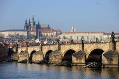 Charles-Brücke und Prag-Schloss Stockbilder