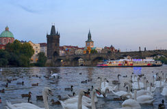 Charles Bridge foto de stock royalty free