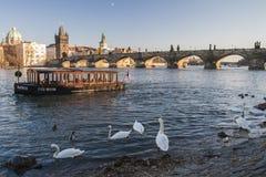 Charles Bridge en Praga Imágenes de archivo libres de regalías