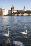 Charles Bridge en Praga Fotografía de archivo
