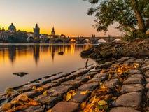 Charles Bridge med det gamla stadbrotornet reflekterade i den Vltava floden på morgonsoluppgångtid, Prague, Tjeckien Arkivfoton