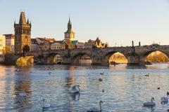 Charles Bridge met recente middagzon, Praag, Tsjechische Republiek Stock Afbeeldingen