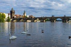 Charles bridge over river Vltava Royalty Free Stock Image