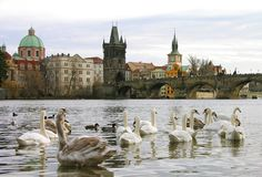 Charles Bridge, Prague Royalty Free Stock Photos