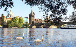 Charles bridge in Prague Royalty Free Stock Photo