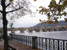 Charles bridge. In Prague in the autumn Stock Images