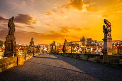 Charles bridge and Prague castleon sunrise Stock Images