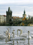 Charles Bridge, Prague, Czech Republic stock photo