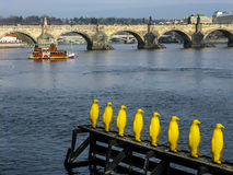 Charles Bridge and Vlata River in Prague Stock Photos