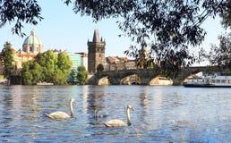 Charles bro i Prague Royaltyfri Foto