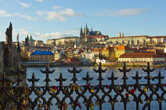 Charles-brug en de Vltava-rivier in Praag Stock Fotografie