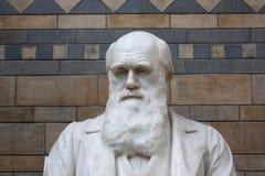 Charles Darwin钢琴primo 免版税库存照片
