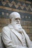 Charles Darwin雕象 免版税库存照片