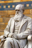 Charles Darwin雕象 库存照片