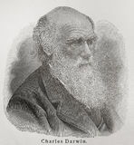 Charles Darwin. Charles Robert Darwin (1809 - 1882) was an English naturalist. He established that all species of life have descended over time from common stock photo