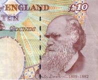 Charles Darwin Stock Foto