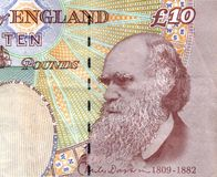 Charles Darwin Stockfoto