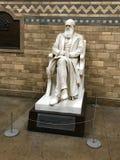 Charles Darwin foto de stock royalty free