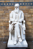 Charles Darwin monument, nationellt historiemuseum, London Royaltyfri Foto