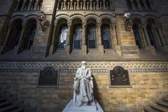 Charles Darwin no museu da história natural em Londres foto de stock royalty free