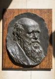 Charles Darwin plakieta w Cambridge Zdjęcia Royalty Free