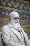 Charles Darwin Statue Royalty Free Stock Photo