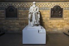 Charles Darwin Statue no museu da história natural em Londres fotografia de stock royalty free