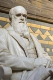 Charles Darwin Statue no museu da história natural em Londres imagem de stock