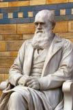Charles Darwin staty Arkivfoto