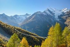Charles Kuonen suspension bridge in Swiss Alps. With 494 metres, it is the longest suspension bridge in the world stock image