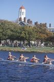 Charles Regatta, Stock Photo
