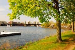 Charles River Esplanade, Boston fotografía de archivo libre de regalías