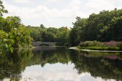 Charles River Needham MOR från Charles River Peninsula Arkivfoton