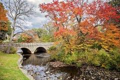 Charles rzeka w jesieni zdjęcie stock