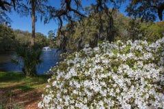 Charles Towne Landing Historic Site South Carolina stock photos