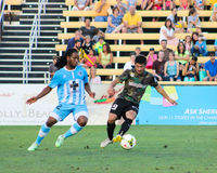 Charleston Battery Midfielder Dante Marini. Charleston Battery Midfielder Dante Marini #19 Royalty Free Stock Photography