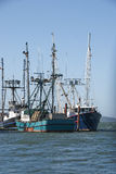 Charleston Boats Royalty Free Stock Image