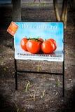 Charleston Farmers Market, Marion Park, Charleston, SC. Stock Photography