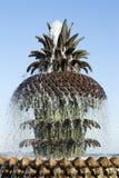 charleston fontanny sc ananasa Obraz Stock