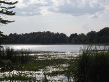 Charleston jezioro Obraz Royalty Free