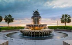Charleston SC fontanny nabrzeża Ananasowy park zdjęcie royalty free
