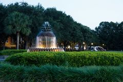 Charleston, SC pineapple fountain. Int he evening Stock Photography