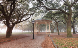 Charleston South Carolina Foggy Morning Battery Park Stock Photo
