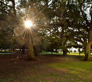 Charleston Sunrise Image libre de droits