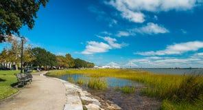 Charlestonen parkerar Royaltyfria Bilder