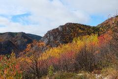 Charlevoix jesieni krajobraz Zdjęcia Stock