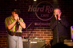 Charlie Musselwhite & Marcian Petrescu Royalty Free Stock Image